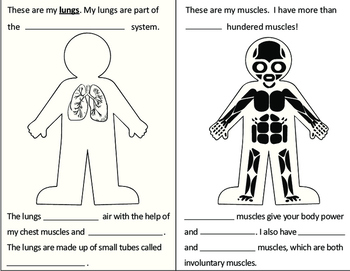 Human Body Booklet