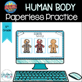 Human Body Boom Cards [For Boom Learning] | Science Centers