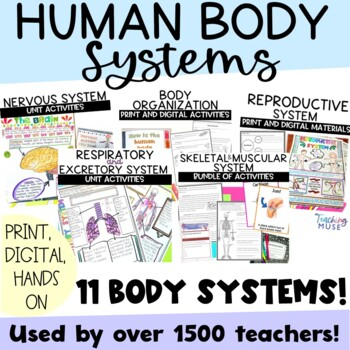 Human Body System Unit of Nonfiction Articles Activities Flip Books and Projects