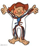 Human Body CIS Lesson/Close Read