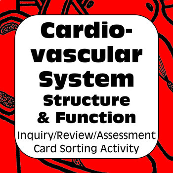 Cardiovascular System Structure &Function Card Sort & Assessment for High School