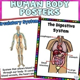 Human Body Classroom Decor Posters Growing Bundle