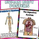 Human Body Classroom Decor Posters Growing Bundle