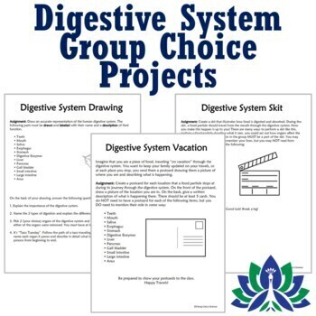 NGSS Human Body Systems Activity Digestive Group Project 3 options MS-LS1-3