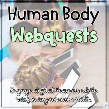 Human Body Digital Web Internet Search Research Activity