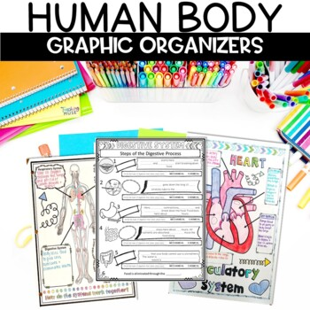 Human Body Sketch Note Graphic Organizer Activity Bundle