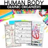 Human Body Sketch Note Graphic Organizer Activity Bundle
