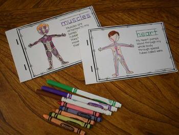 Human Body Emergent Reader
