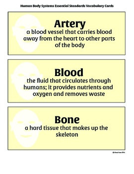 Human Body Essential Standards Vocabulary Cards