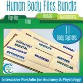Human Body Files Bundle