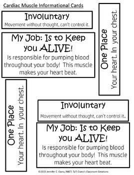 Human Body Pack: Muscular System