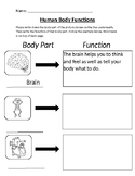 Human Body Functions Quiz