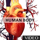 Human Body - Human Anatomy and Organs Rap Video [3:11]