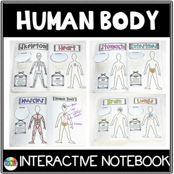 Human Body Interactive Notebook