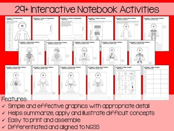 Human Body Systems Interactive Notebook Unit