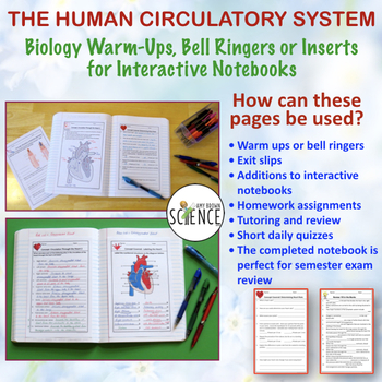 Human Body Interactive Notebooks, Warm Ups: Circulatory System