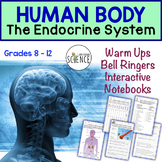 Human Body Interactive Notebooks, Warm Ups: Endocrine System