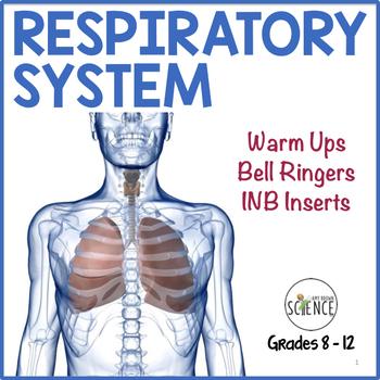 Human Body Interactive Notebooks, Warm Ups: Respiratory System