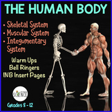 Human Body Interactive Notebooks, Warm Ups: Skeletal, Muscular, Integumentary