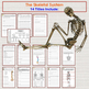 Human Body Warm Ups, Bell Ringers: Skeletal, Muscular, Integumentary