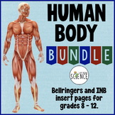 Human Body Bundle: Anatomy and Physiology Warm Ups and Bell Ringers