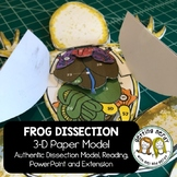 Frog Dissection - 3-d Paper Model
