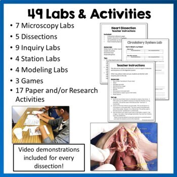 Anatomy & Physiology Curriculum: PowerPoints, Diagrams, Labs, & Worksheets