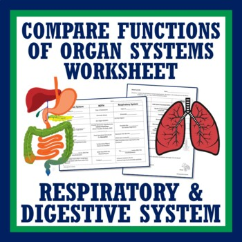 Middle School Human Body - Review Digestive + Circulatory Worksheet MS-LS1-3