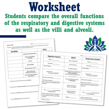 Middle School Human Body Systems Review Digestive Circulatory Worksheet MS-LS1-3