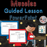 Human Body Muscles Guided Lesson PowerPoint Template