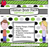 Human Body Pack: Nervous System