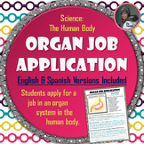 Human Body Organ Job Application Assignment in English and Spanish
