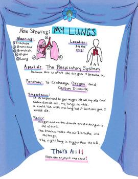 Human Body Organ Poster Project