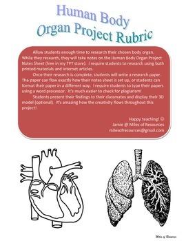 Human Body Organ Project Rubric