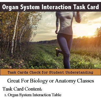 Human Body - Organ System Interaction Task Card