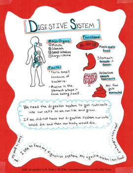 Human Body Organ System Poster Project