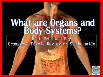 Human Body (Organ and Organ Function)Test and Review Cross