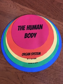 Human Body Organization Flip Book with Google Slides