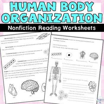 Human Body Organization Nonfiction Article and Activity