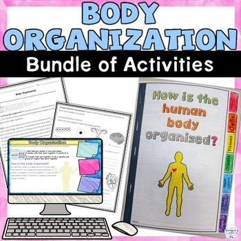 Human Body Organization Unit