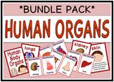 Human Organs (BUNDLE PACK)