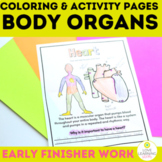 Body Organs Coloring Pages Worksheets  | Human Body Systems Structure & Function