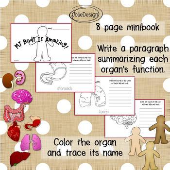 Human Body Organs Minibook - K - 1st Science