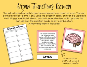 Human Body Organs Montessori 3 Part Cards