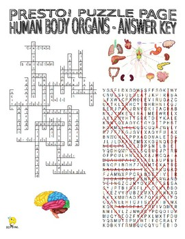 Human Body Organs Puzzle Page (Wordsearch and Criss-Cross)