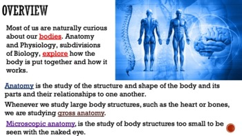 Human Body Orientation with Notetaking Guide for Students