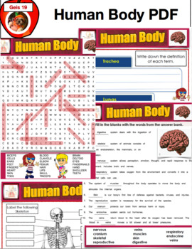 Human Body PDF 60 Pages Science Unit