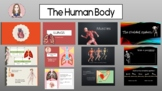Human Body PPTs: Heart, Lungs, Muscles, Skeleton