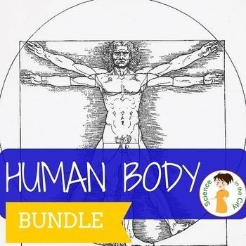 Human Body Systems Activity Bundle