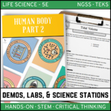 Human Body Part 2 - Demos, Labs and Science Stations